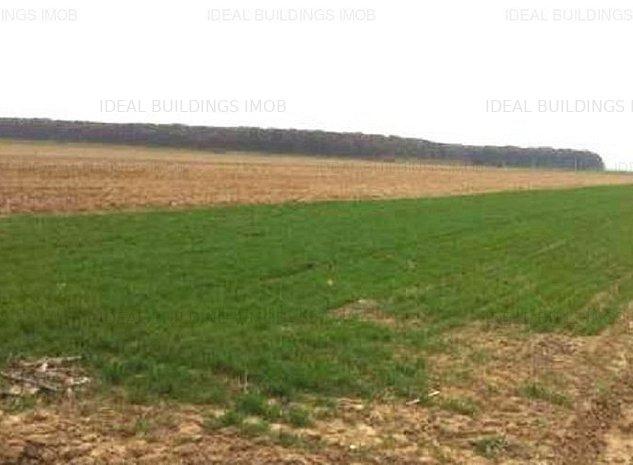Vanzare Teren Agricol 1,4 ha Scurtesti - Vadu Pasii - Buzau - imaginea 1