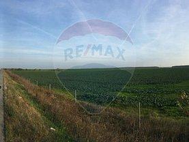 Teren agricol de vânzare, în Brăneşti