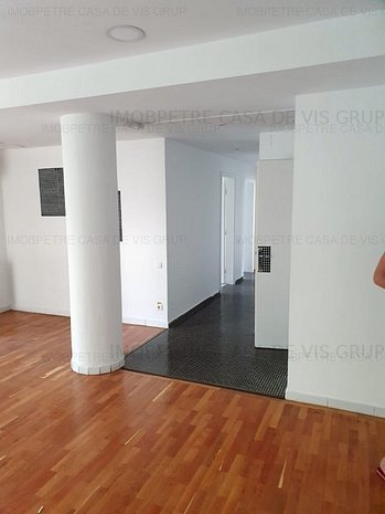 Aviatiei-Nord Nicolaie Caranfir apartament duplex cu 5 camere sup 210mp - imaginea 1
