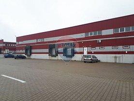 Închiriere birou în Arad, 6 Vanatori