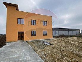Vânzare spaţiu industrial în Arad, Exterior Nord