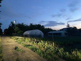 Teren agricol de vânzare, în Ileana