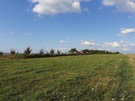 Teren agricol de vânzare în Cluj-Napoca, Borhanci