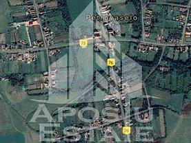 Teren constructii de vânzare, în Petrovaselo
