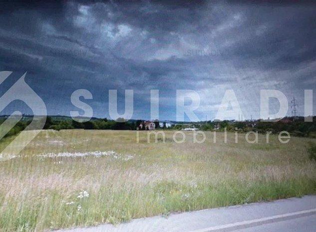 teren 7194 mp- Buna Ziua - imaginea 1