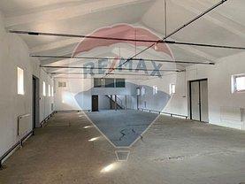 Închiriere spaţiu industrial în Bacau, CFR