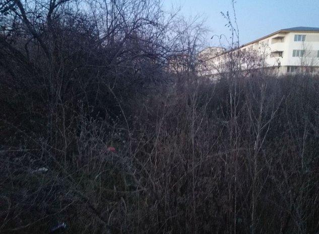 Teren in zona Th. Pallady - Vitioara - imaginea 1