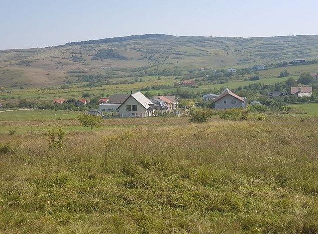 Teren Intravilan | Zona Borhanci | 1264 mp - imaginea 1