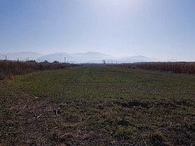 Teren agricol de vânzare, în Sacele, zona Est