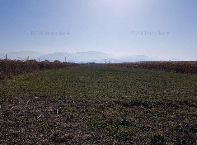 Teren agricol zona Sacele spre Tarlungeni - imaginea 1