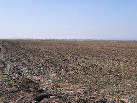 Teren agricol de vânzare, în Prejmer
