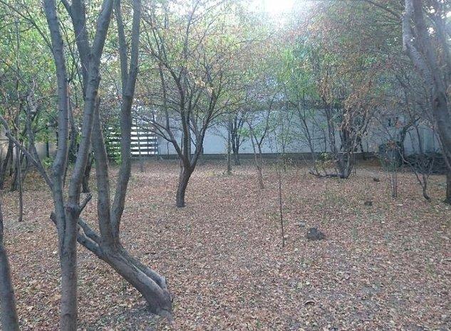 Vanzare teren Brancoveanu - imaginea 1