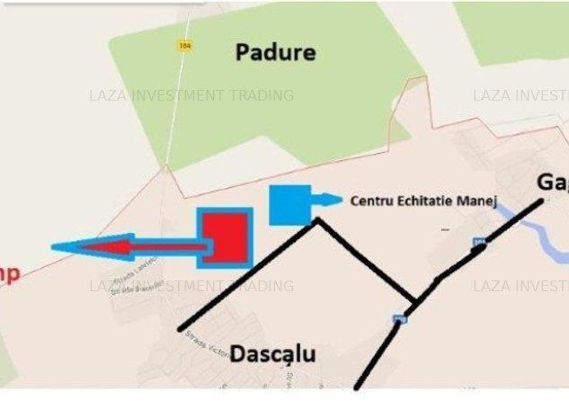 Teren Dascalu langa centru de echitatie - imaginea 1