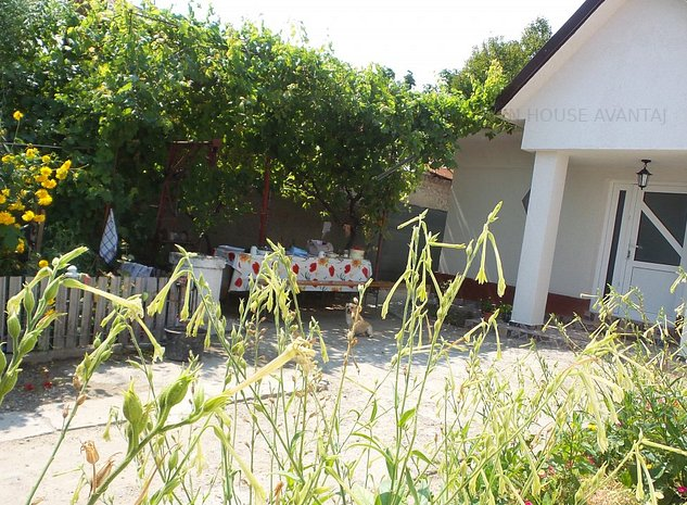 Casa GOLESTI sat Nou( langa Focsani - imaginea 1