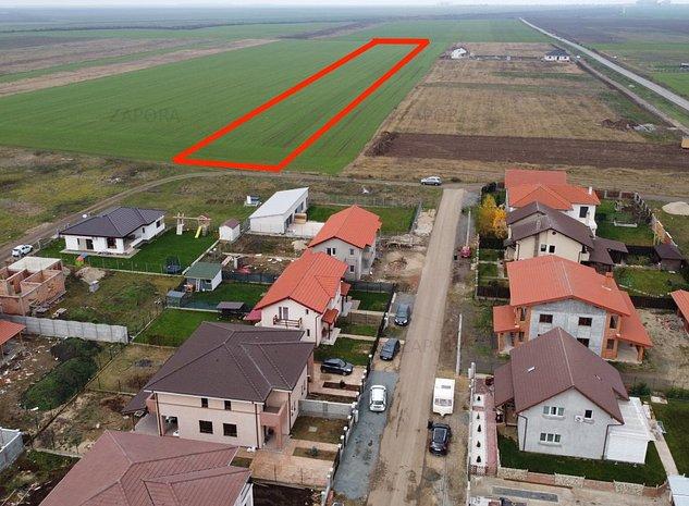 teren Sanandrei la limita intravilanului pentru PUZ 3 ha  - imaginea 1