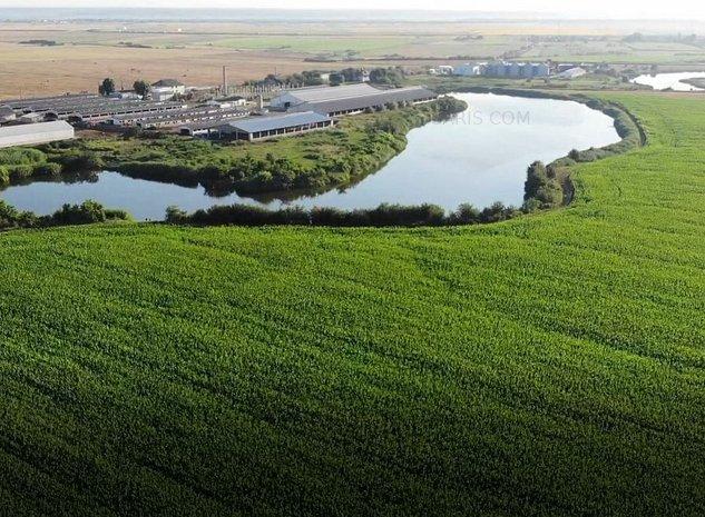teren agricol Arges: lacuri si teren irigat