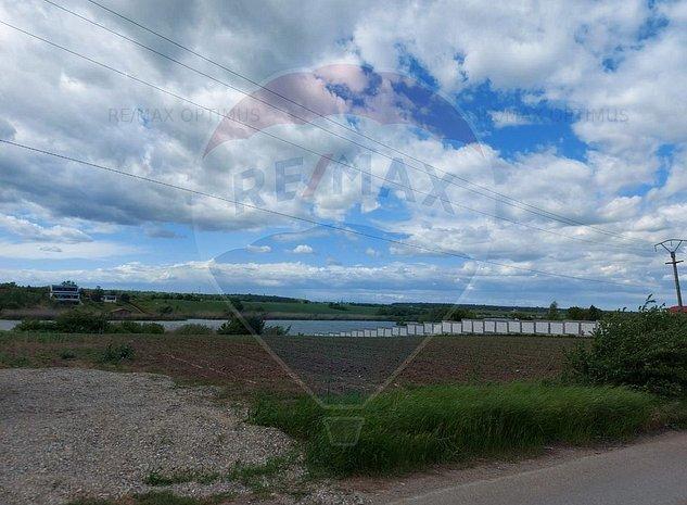 Teren 1283 mp x 3 loturi Ciofliceni vedere Lac Snagov - imaginea 1