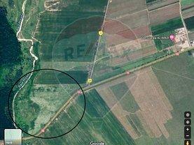 Teren agricol de vânzare, în Dărmăneşti