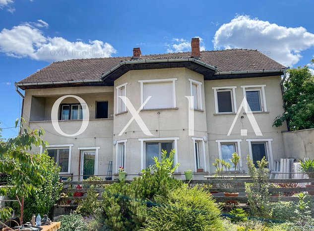 CX 126 Casa individuala pe Liviu Rebreanu, ideala investitie ! - imaginea 1