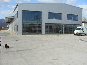 Vânzare spaţiu industrial în Piatra-Neamt, Vanatori