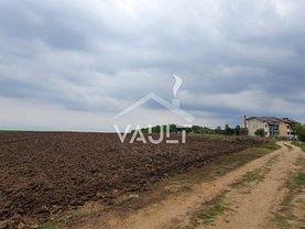 Teren agricol de vânzare, în Belciugatele, zona Vest