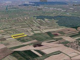 Teren agricol de vânzare, în Moşniţa Veche