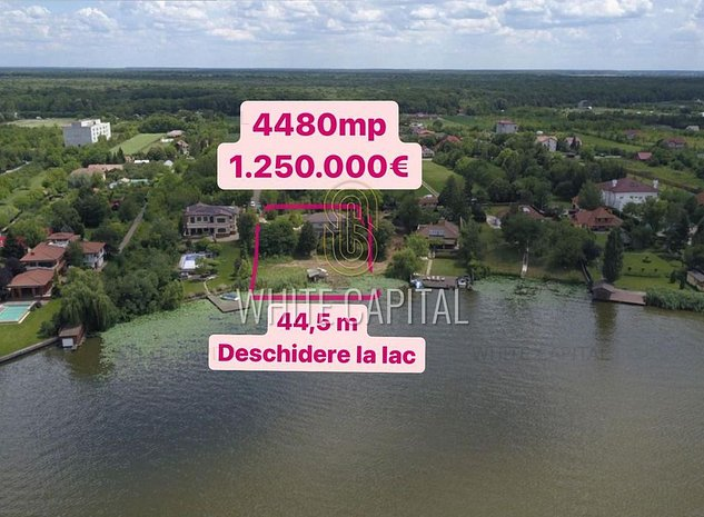 Teren 4488mp - Malul Lacului Snagov - imaginea 1