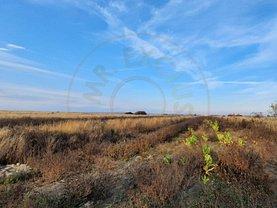 Teren agricol de vânzare, în Bradu