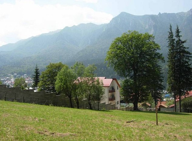 priveliste munti (latura)