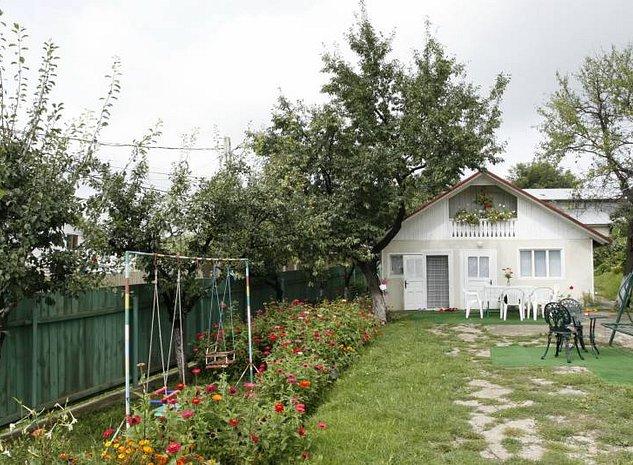 Teren 1000 mp, zona Parc Copou-Vaslui. Toate facilităţile. - imaginea 1