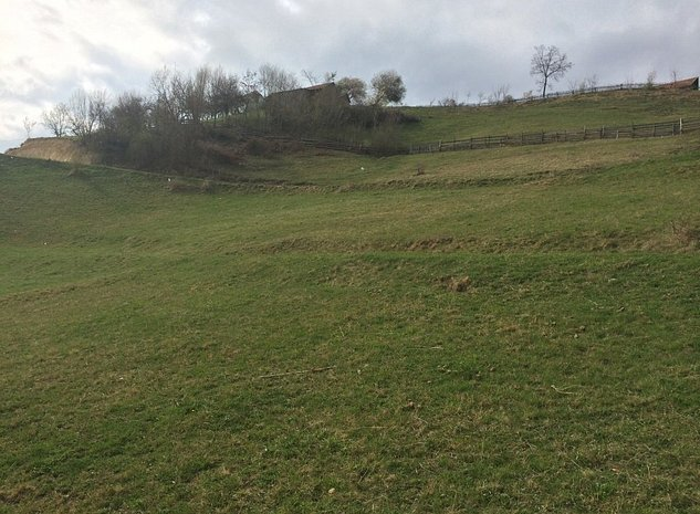 Vand teren 3600mp, Zarnesti(priveliste Bucegi, Piatra Craiului) - imaginea 1