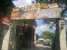 Vânzare hotel/pensiune în Craiova, Central