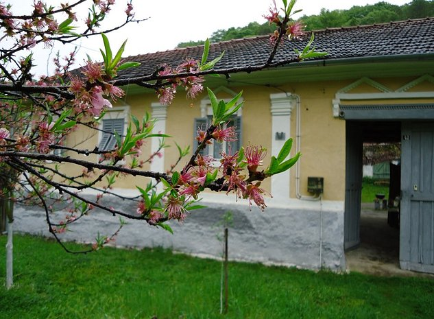 Vand casa de vacanta!Calina Jud. Caras-Severin , situata la 110 km de Timisoara. - imaginea 1