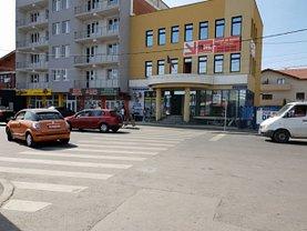 Casa de închiriat 12 camere, în Satu Mare, zona Semicentral