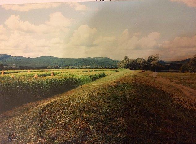 Teren arabil Dobra Hunedoara - vanzare - imaginea 1