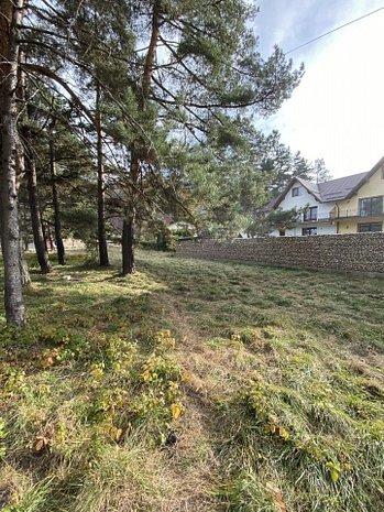 Teren de vanzare in Brasov, Sacele zona camping Bunloc - imaginea 1