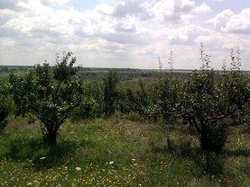 Teren agricol de vânzare, în Teslui