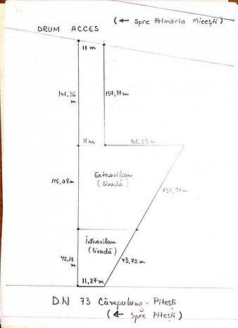 7500 mp teren Micesti, judeţul Arges - imaginea 1