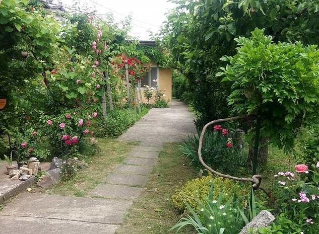 Vând imobil ( casă şi grădină ) în Râmnicu Vâlcea , zonă centrală - imaginea 1