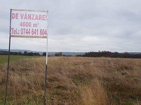Teren agricol de vânzare, în Şelimbăr