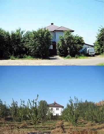 Casa cu gradina bio langa Snagov - imaginea 1